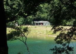 Beautiful turquoise water reminiscent of Abel Tasman.