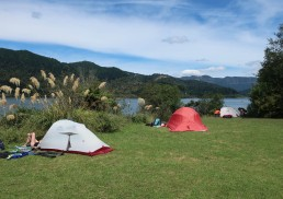 The lovely Waiharuru campsite.