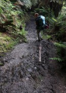 And more mud.