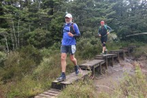These boardwalks were constructed in some places to protect the fragile vegetation.