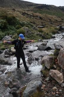 Balancing act at a stream crossing.