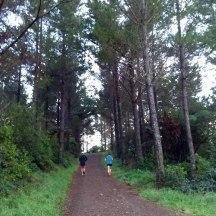Gerry and Nina heading uphill.