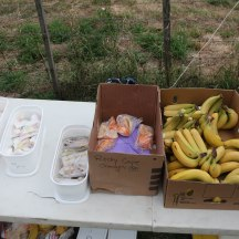 A sample of the great spread on offer to participants at the transition points. Having the snacks packaged in individual portions was a nice and hygienic option, even though it did result in some plastic bag litter along the route.