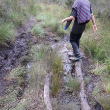 A little bit of mud to keep it interesting. And another balancing exercise.