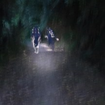 With headlamps and reflective clothing we headed up Turitua Road.