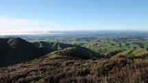 More Wairarapa views