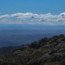 The snow-covered Mt Ruapehu in the hazy distance.