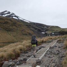 Steps leading to Tahurangi Lodge, from where the final stretch of the summit can be undertaken.