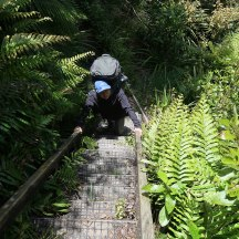 Steep ladders to get in and out of the gullies.