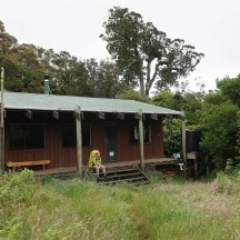 Reaching our New Year's Eve destination - the Waiaua Gorge Hut.
