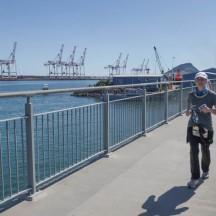 A scenic section overlooking Port Tauranga.