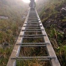 The infamous aluminium Tararua ladder.